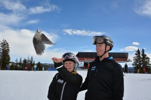 The staff had trained some birds at the summit to eat food out of people's hands. It's a Jackwhacker otherwise known as a Meat Bird because they are omnivores.