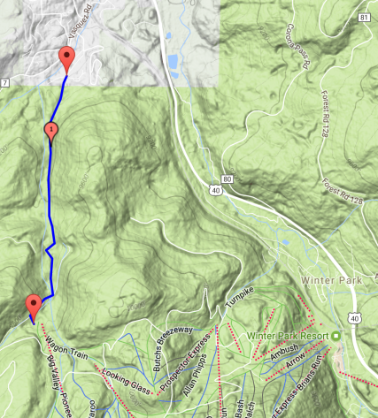 Google Maps view of the route.